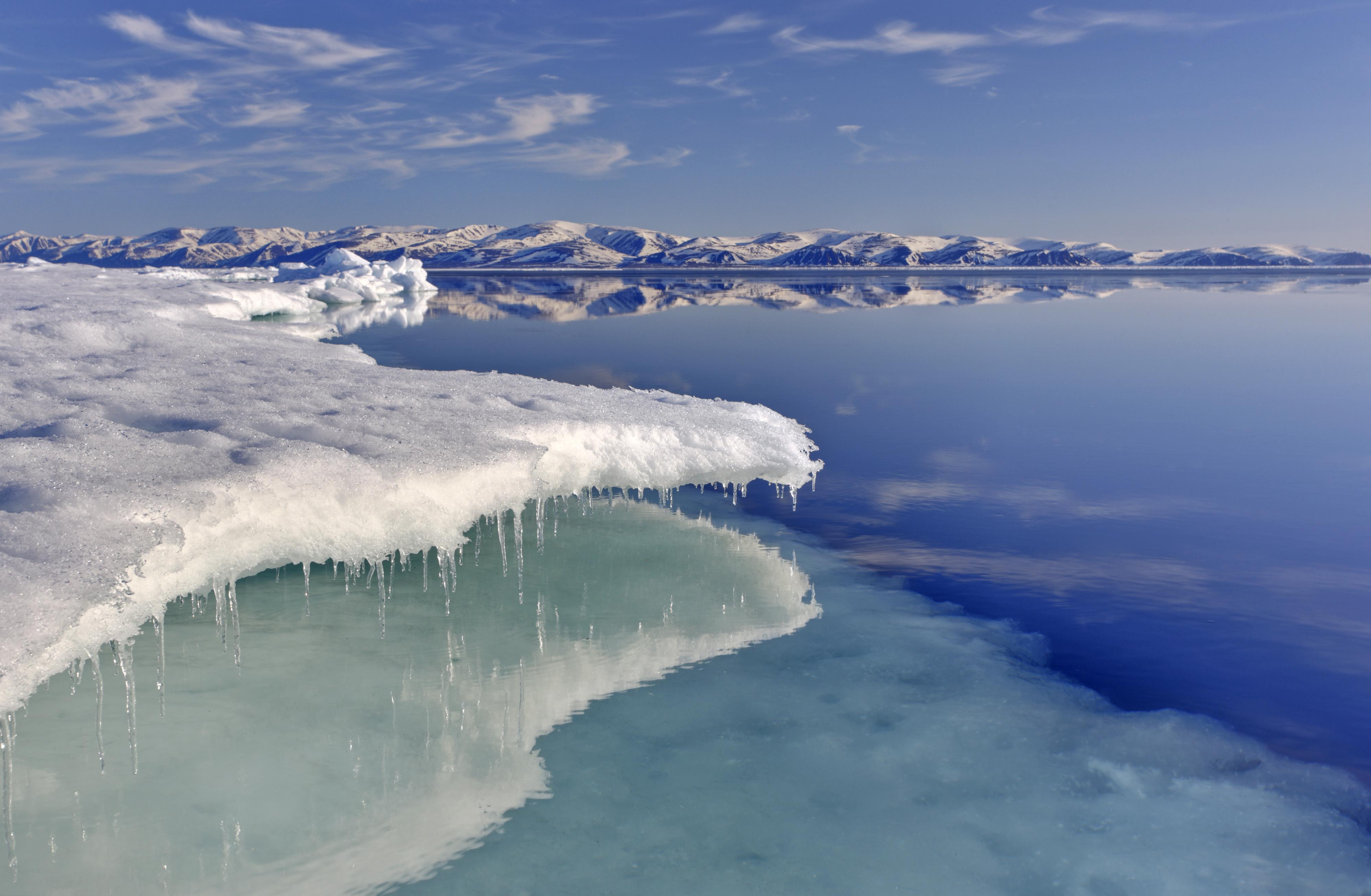Nordamerika, Kanada, Nordkanada, Nunavut, Baffin Island, Eclipse Sound, Pond Inlet, Juni 2010 Eiskante, Packeis, Bylot Island